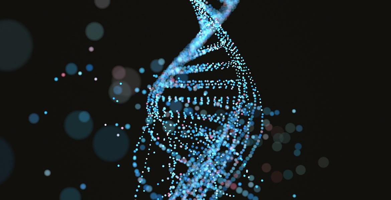 NE KADAR DNA?