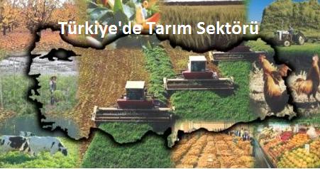 Tarım sektörü, Türkiye'nin gelişmesine katkı sağlayan sektörlerin başında geliyor