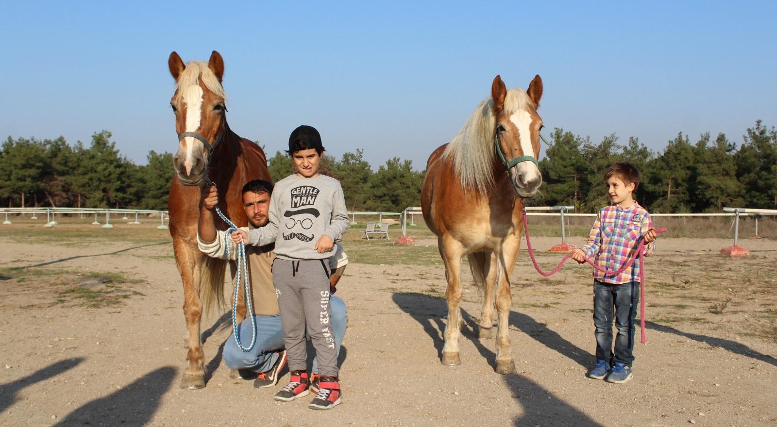 İzmir'in fayton atları ikinci baharı Bursa'da yaşıyor