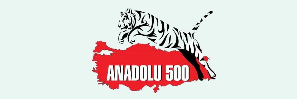 ANADOLU 500 listesinde Bursa yine zirvede.